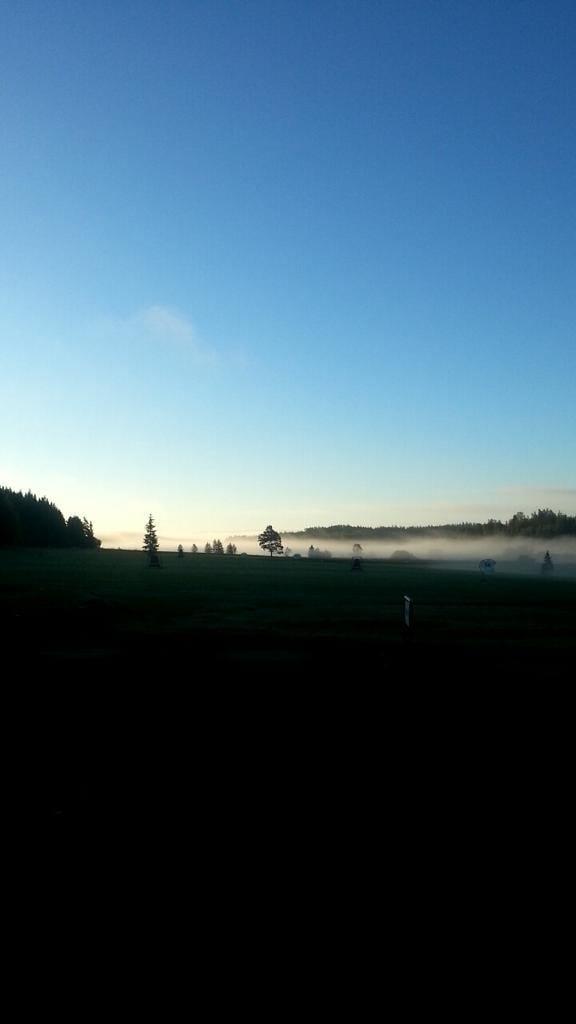 Kuva tältä aamulta.